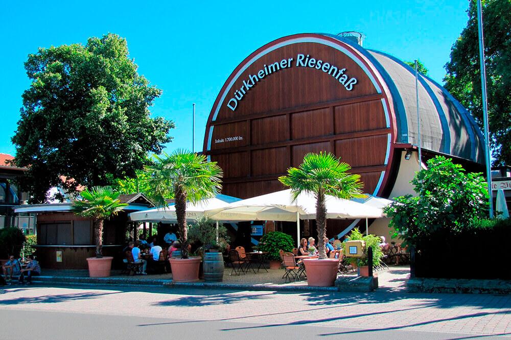 Umgebung Pfalz Hotel Lowengarten Speyer